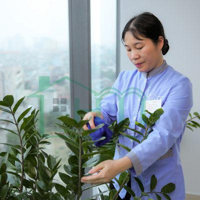 Hoàn Mỹ Clean cung cấp dịch vụ dọn dẹp nhà cửa tại Hà Nội uy tín, chất lượng